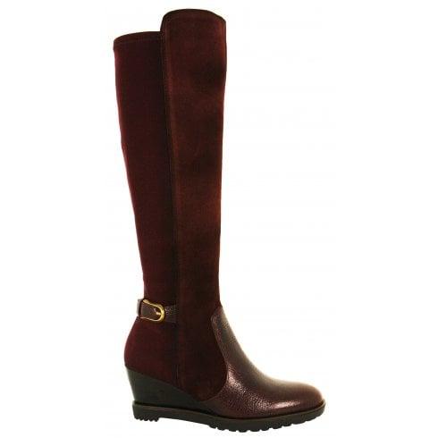 Hispanitas Long Boot with Stretch - 87851